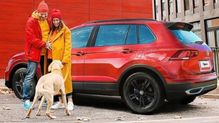 Volkswagen Pets